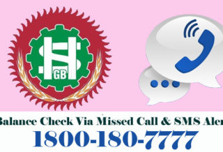 Sarva Haryana Gramin Bank Balance
