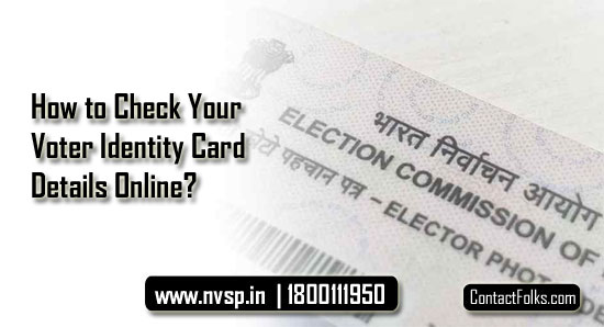 How to Check Your Voter Identity Card Details Online?
